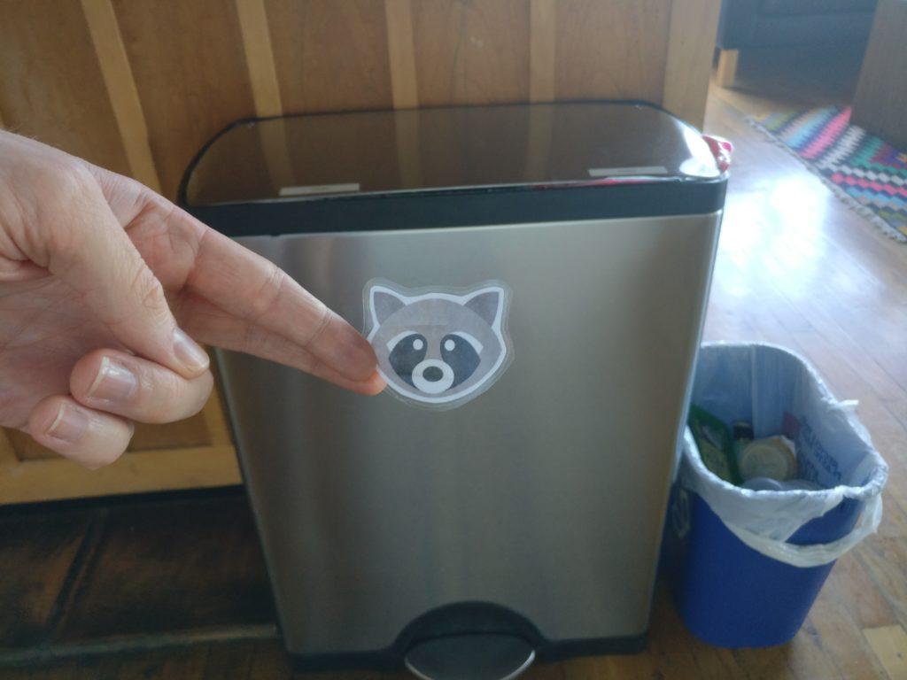 radish lab chores raccoon