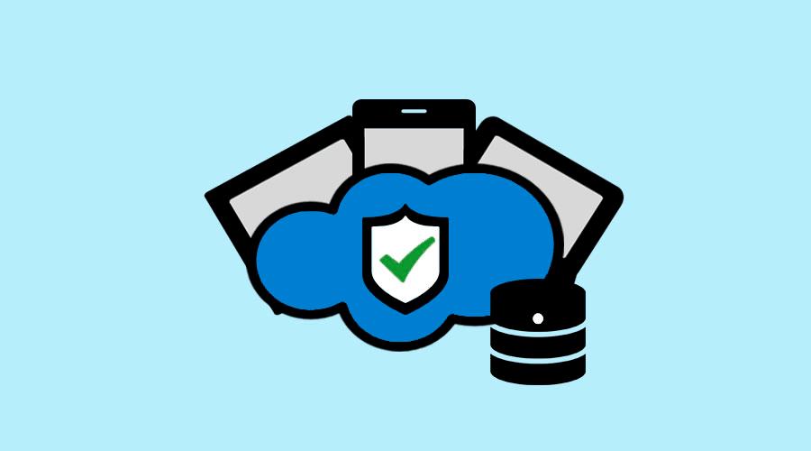 Alle HS-Soft Programme können Cloud-Datenbank genutzt werden