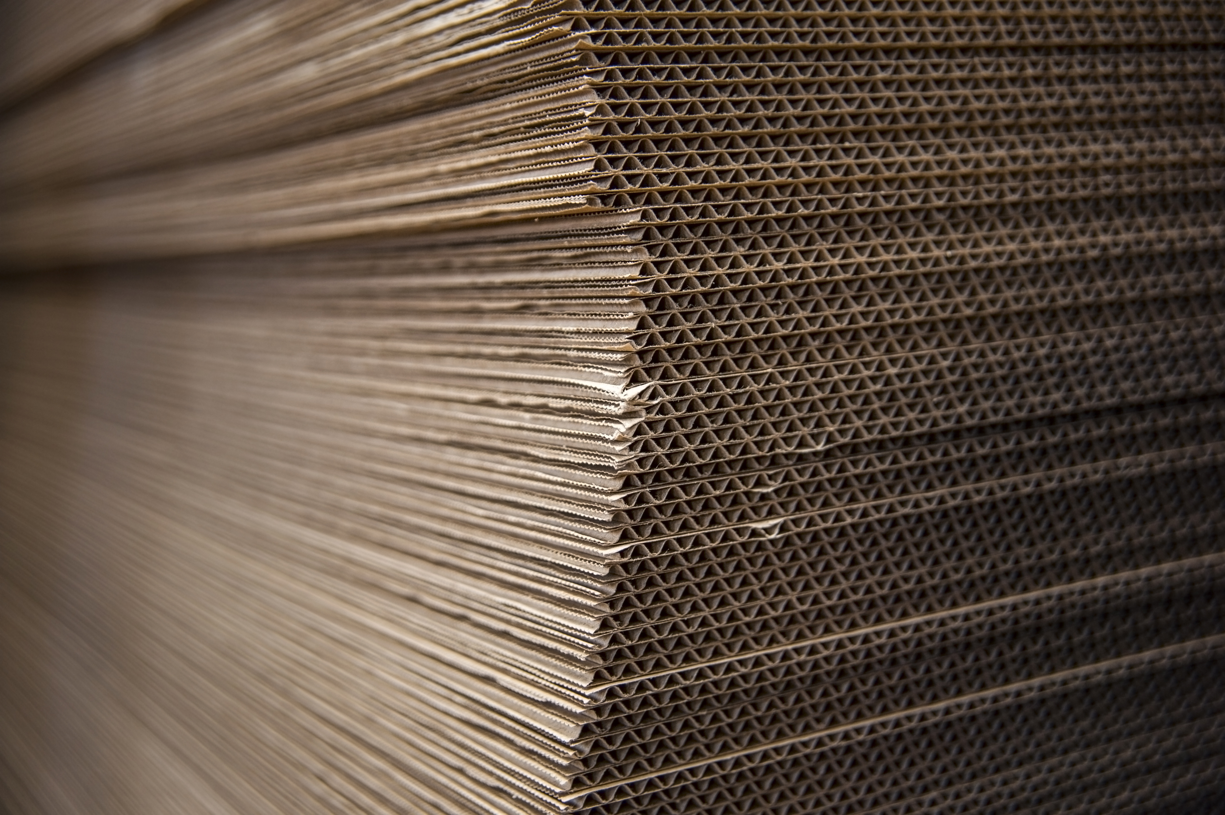 Corrugated & Paper-Based Packaging