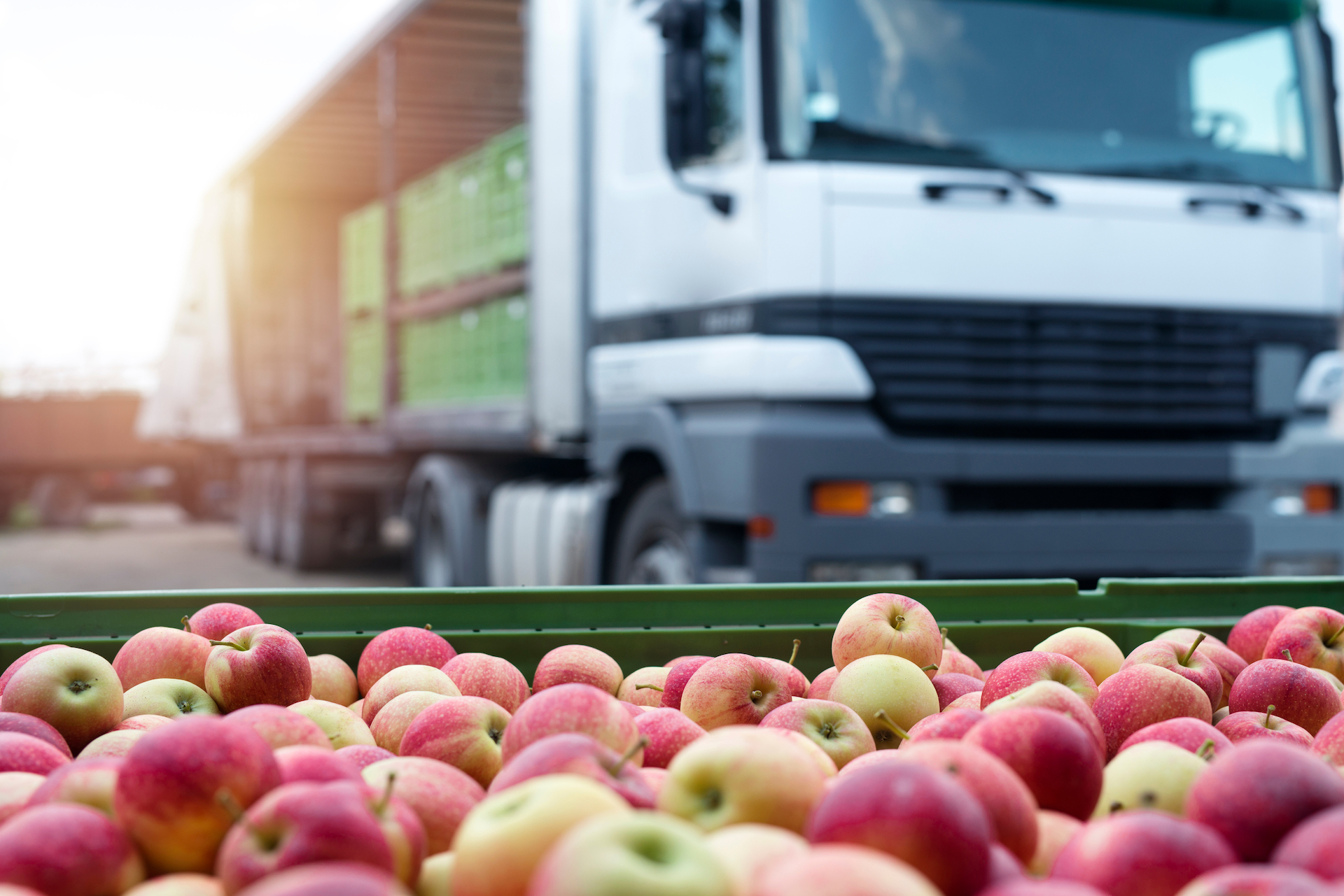 The Challenges of Fresh Produce Logistics – Logmore Blog