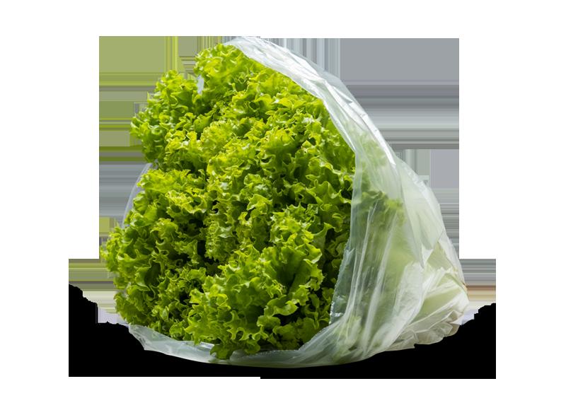Mikroplastikfreie und kompostierbare Verpackungen von Naturapackaging werden für Bio-Karotten, Nudeln und Tomaten verwendet