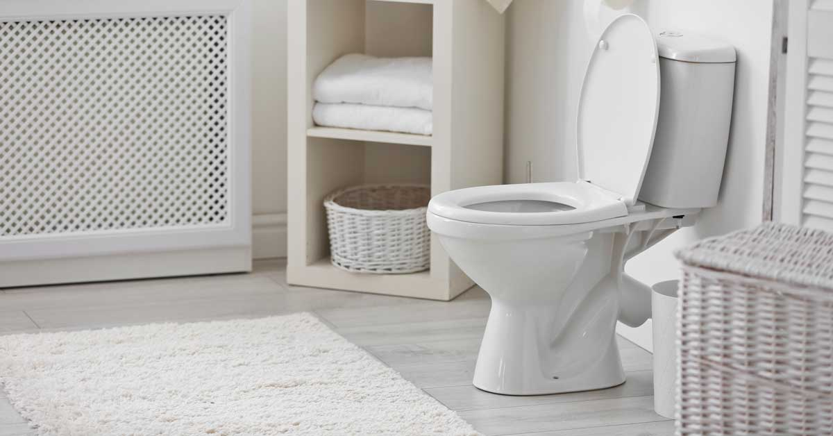 How To Unclog a Toilet Without a Plunger | Today I'm Home