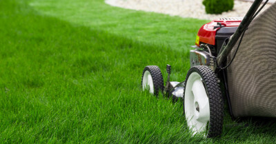 Is It Worth Paying For Lawn Care? | Today I'm Home