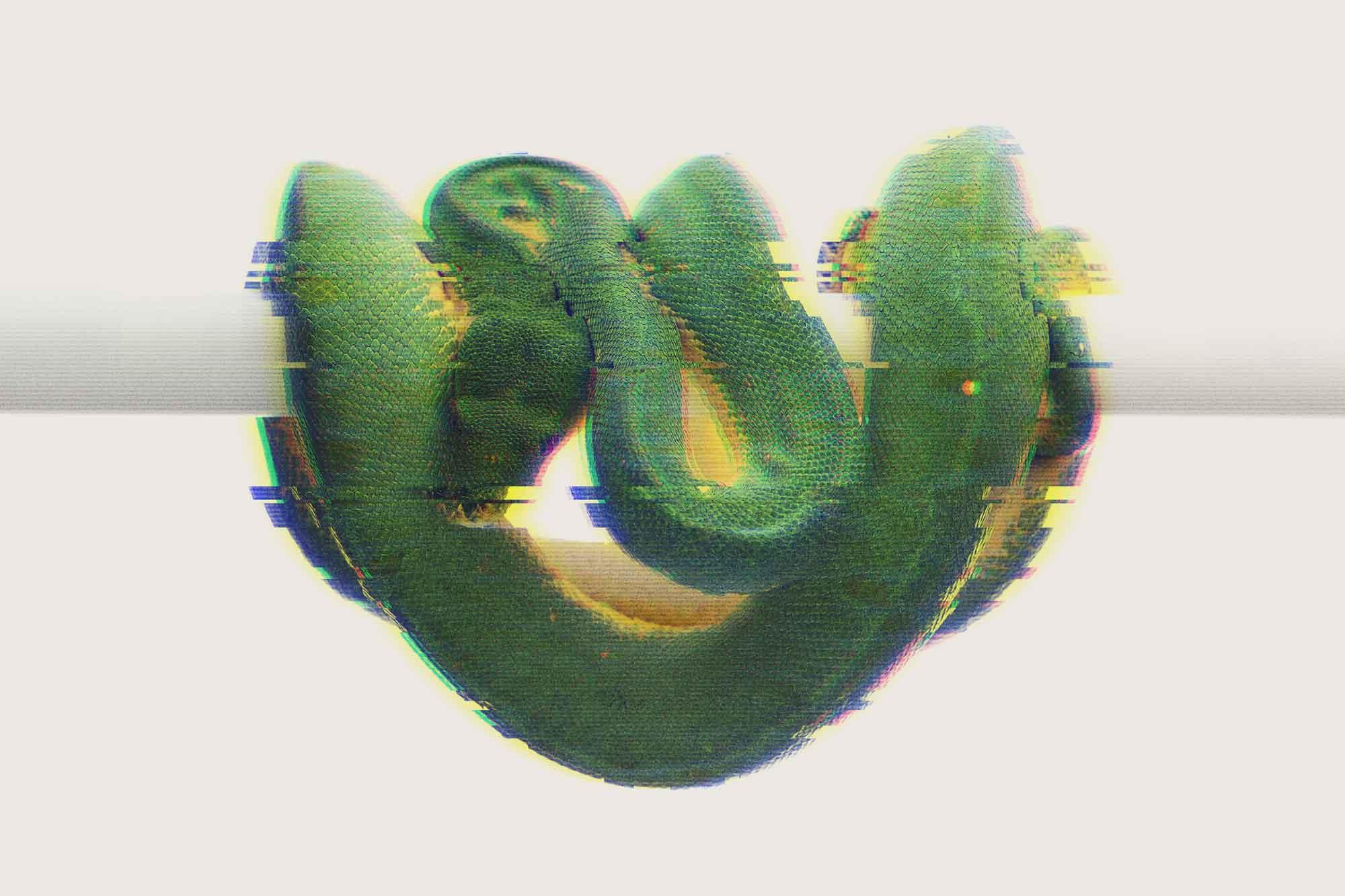 Python Data Visualization @ Deepnote (w/ PyViz overview)