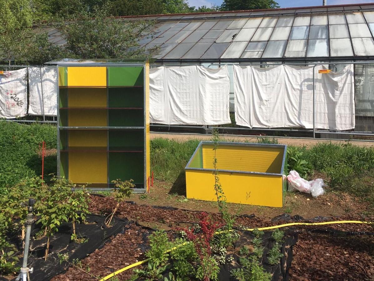 """Projektunterstützung """"Rettet die Bienen"""""""