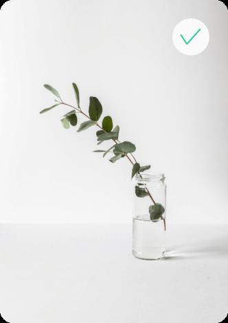 object-detection-leaf-2