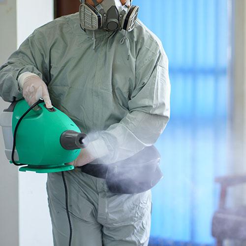 covid19 disinfectant woodstock
