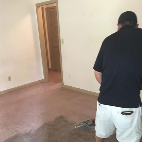 before and after carpet cleaning woodstock