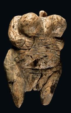 Pregnant Fertility Idol