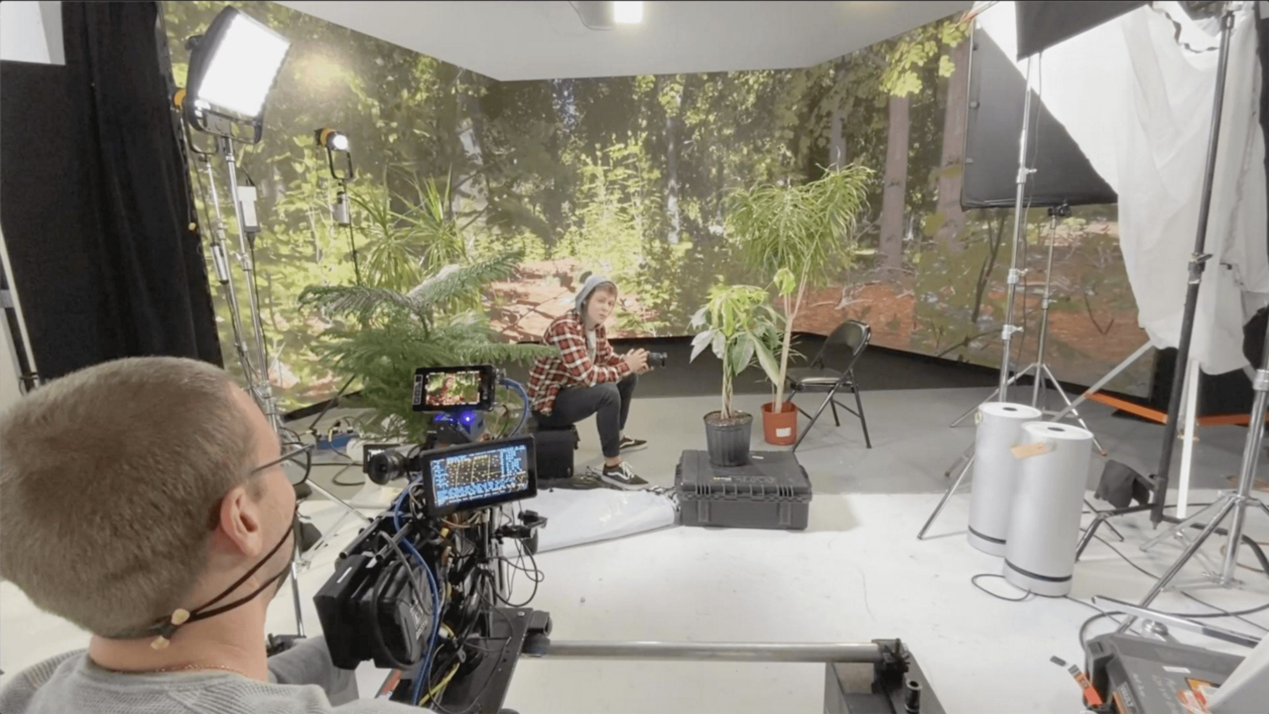 Photo of a virtual production set: forest