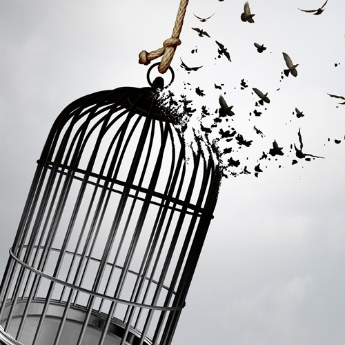 Broken birdcage with birds flying away