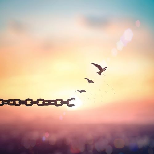 Chain with broken link becomes birds in flight