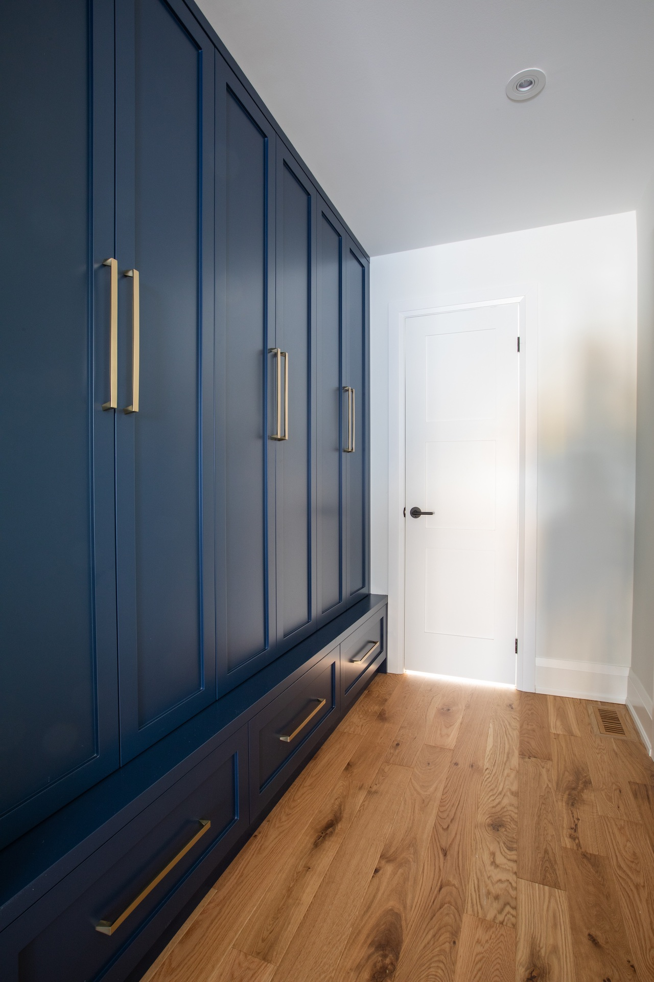 Blue cabinets with gold hardware