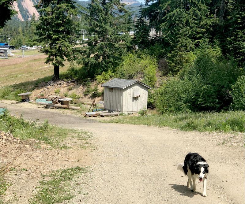 White Pass & Rimrock Lake - Ski Run Hiking and Camping