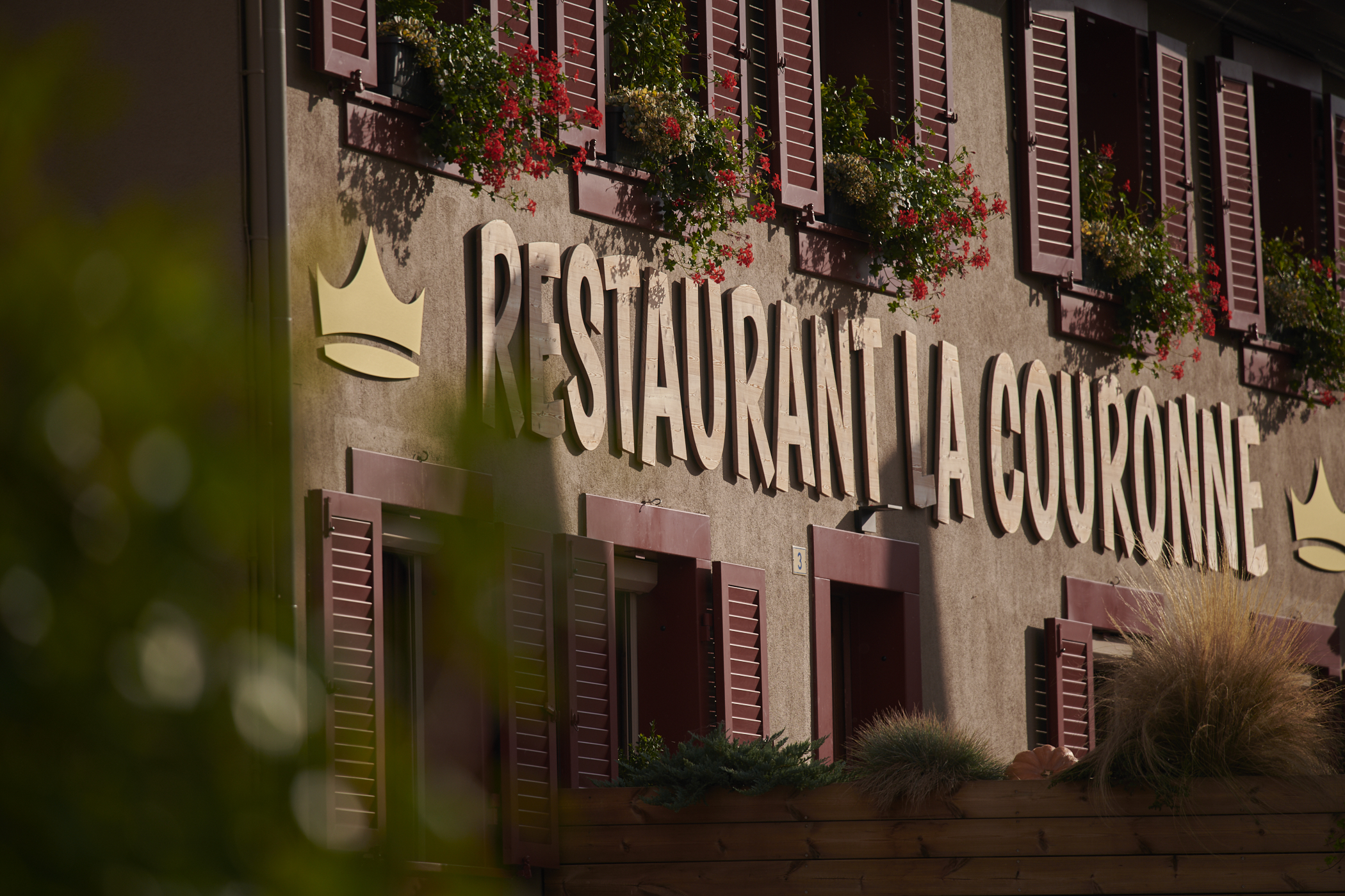 agence de création de site web pour hotels restaurant, spécialisée dans l'hotellerie