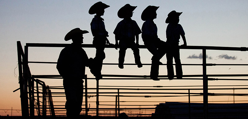 cowboy with his children watching a sunset