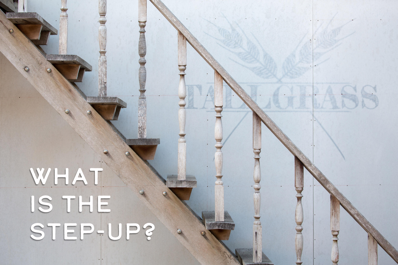 Step Up Steps Back
