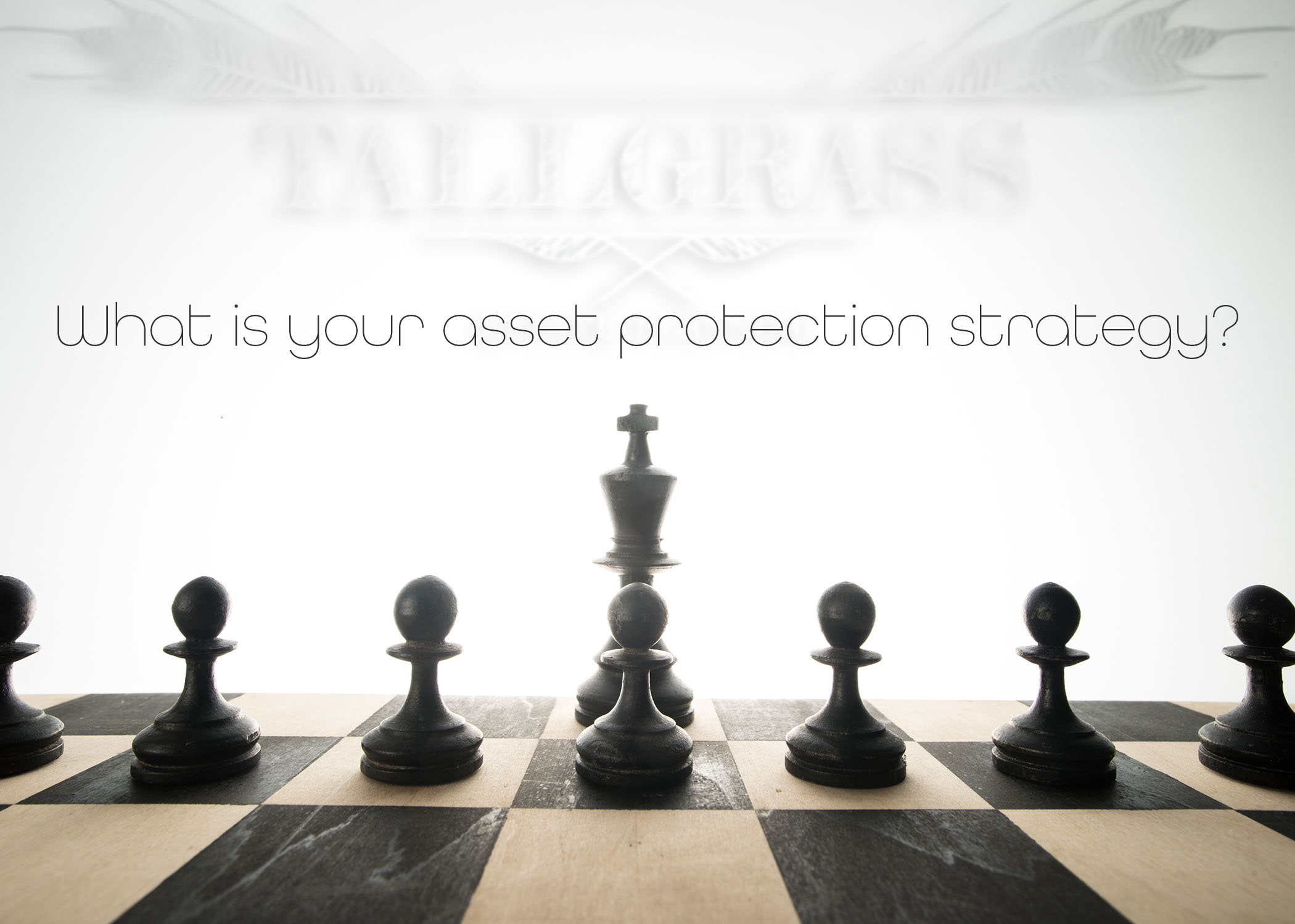 Check: Asset Protection Strategies