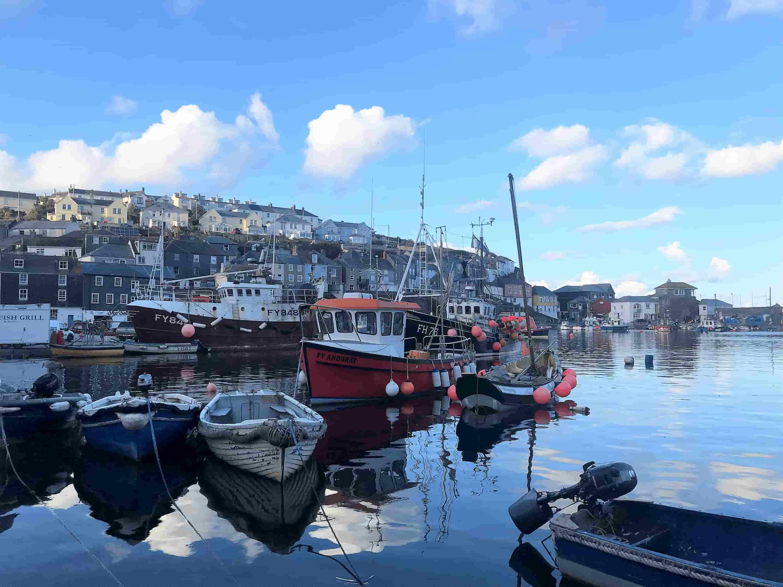 Gems of the Cornish Riviera