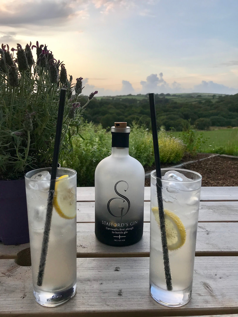 Gin at Colwith Distillery
