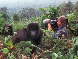 Die Gorillas meines Großvaters
