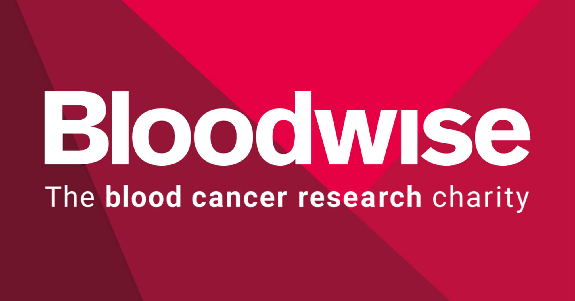 Bloodwise have been working to beat blood cancer since 1960.