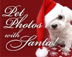 a white fluffy puppy wearing a santa hat on a red background with the writing pet photos with santa
