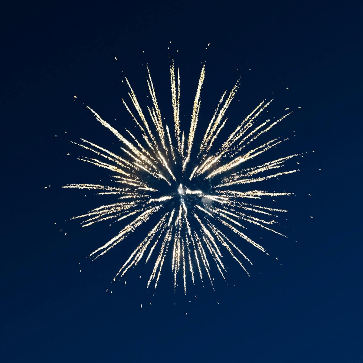 Photo of fireworks lighting up the sky