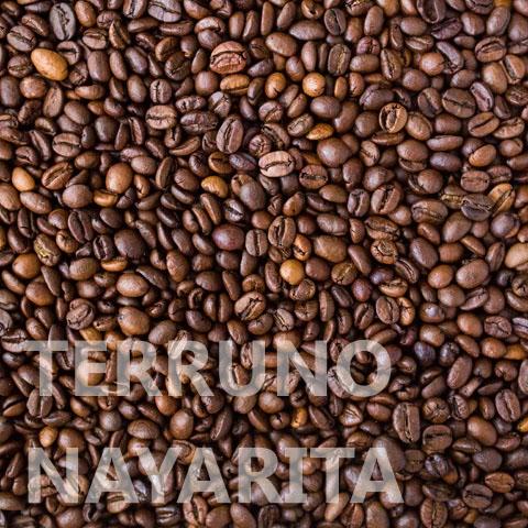 Terruno Nayarita