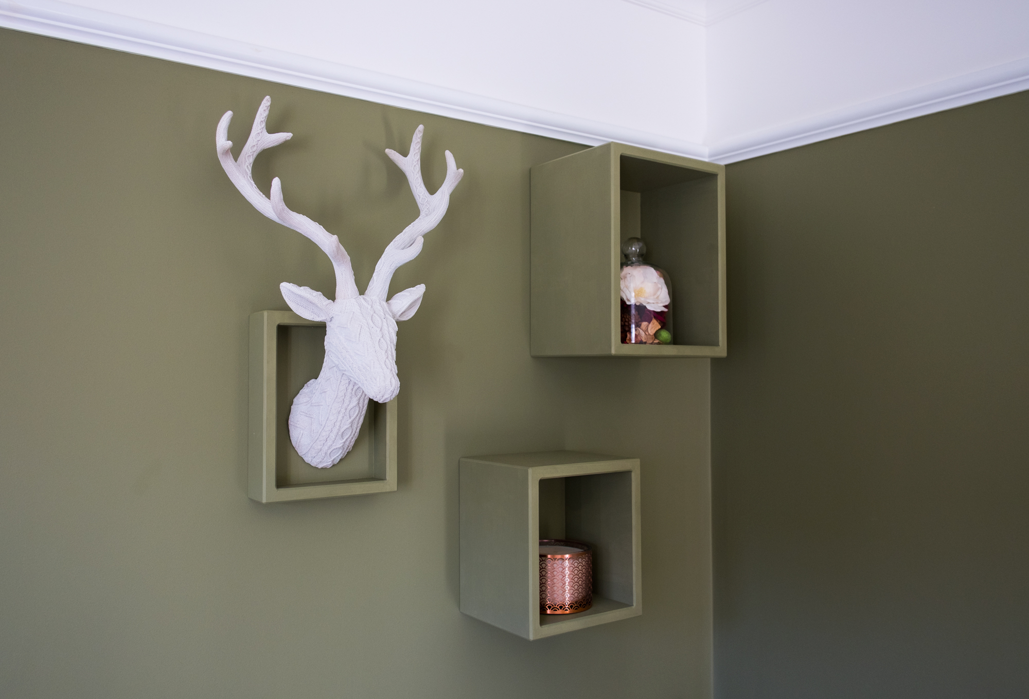 Green floating shelves on a green wall with a stags head and plant