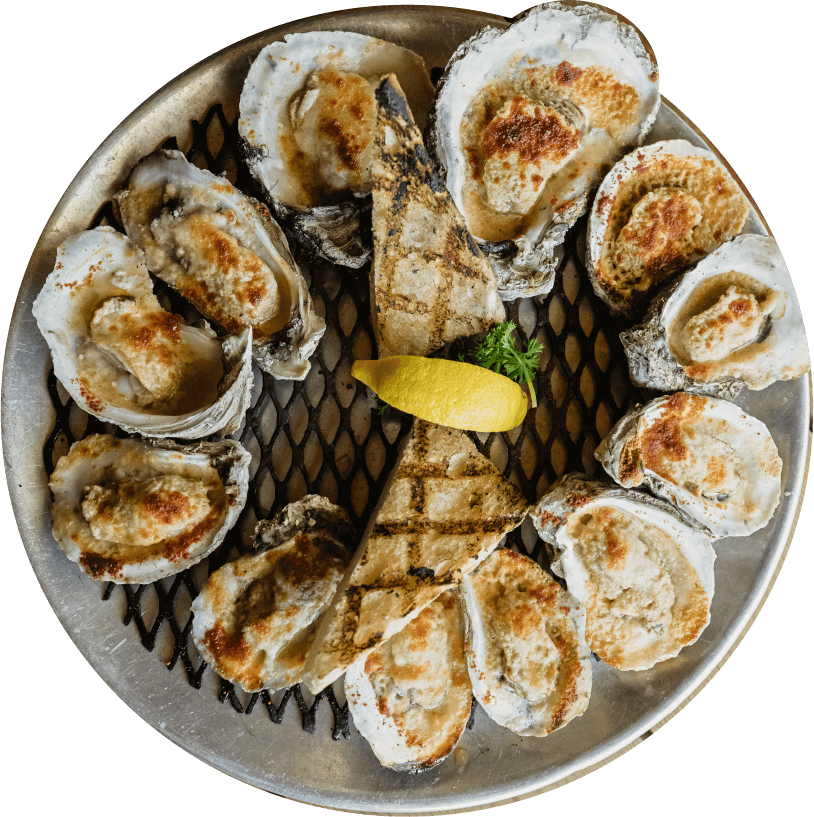 chargrilled oysters on a tray