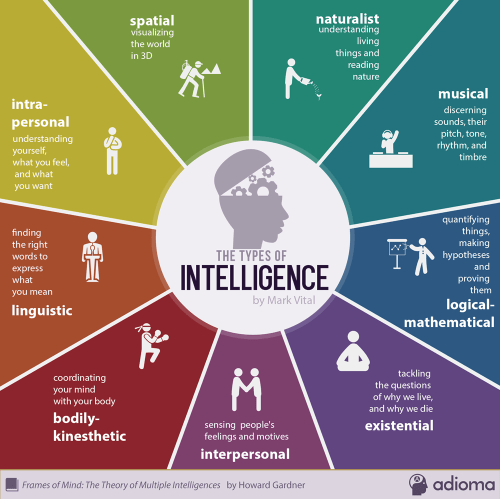 Mark-Vital-Infographic-9-Intelligences