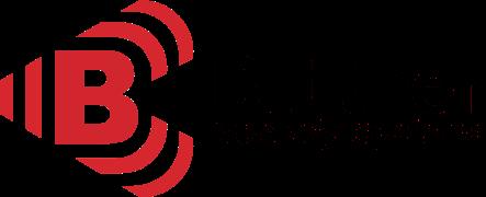 C.D. Büttner Sicherheitstechnik GmbH (Hamburg / Wedel)
