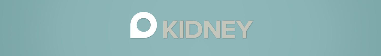 Kidney Scanning