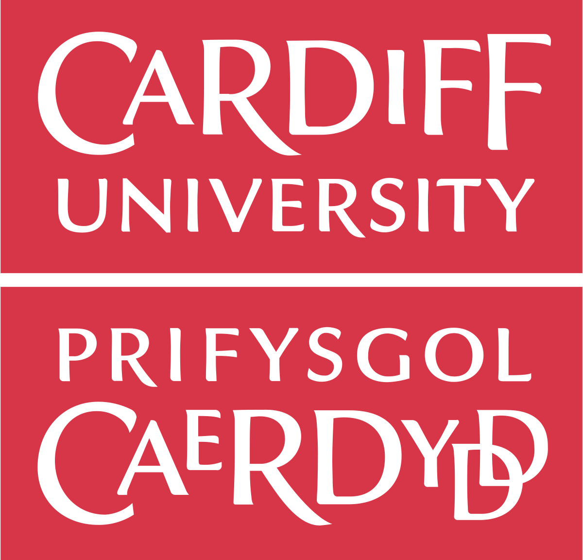 Placements - cardiff university