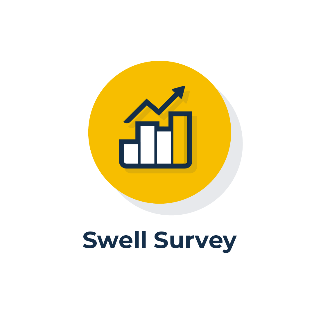 Swell Survey Icon