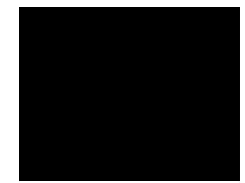 Timberline -26'x44'