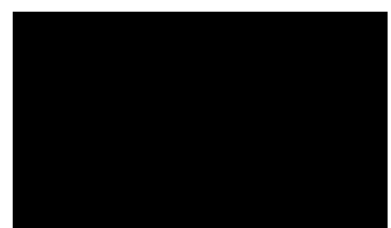 Timberline -26'x48'-Loft