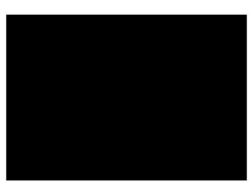 Timberline -28'x52'