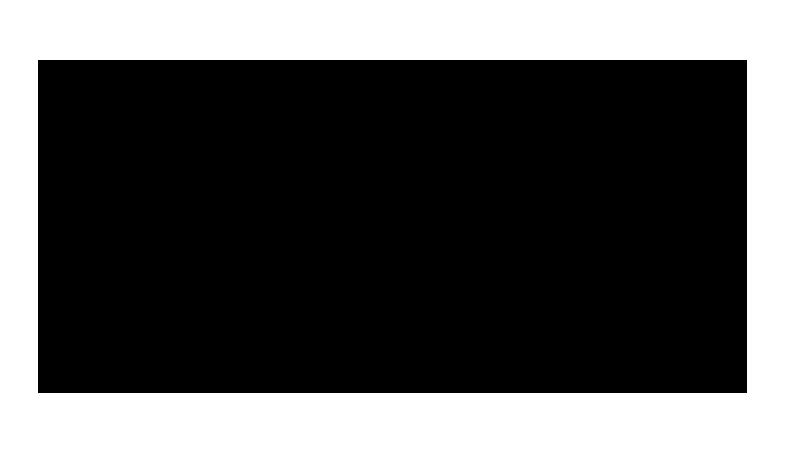 Pioneer-14'x48'