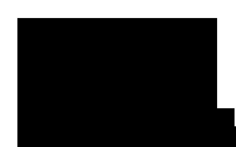 Frontier-14'x40'