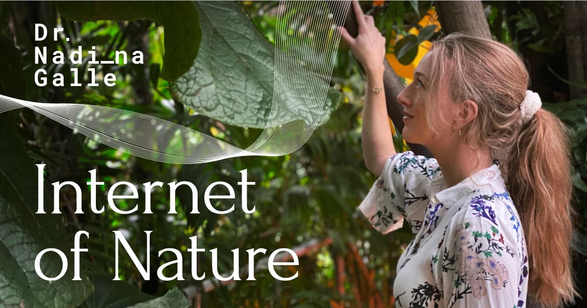 Nadina-Galle-Internet-of-Nature