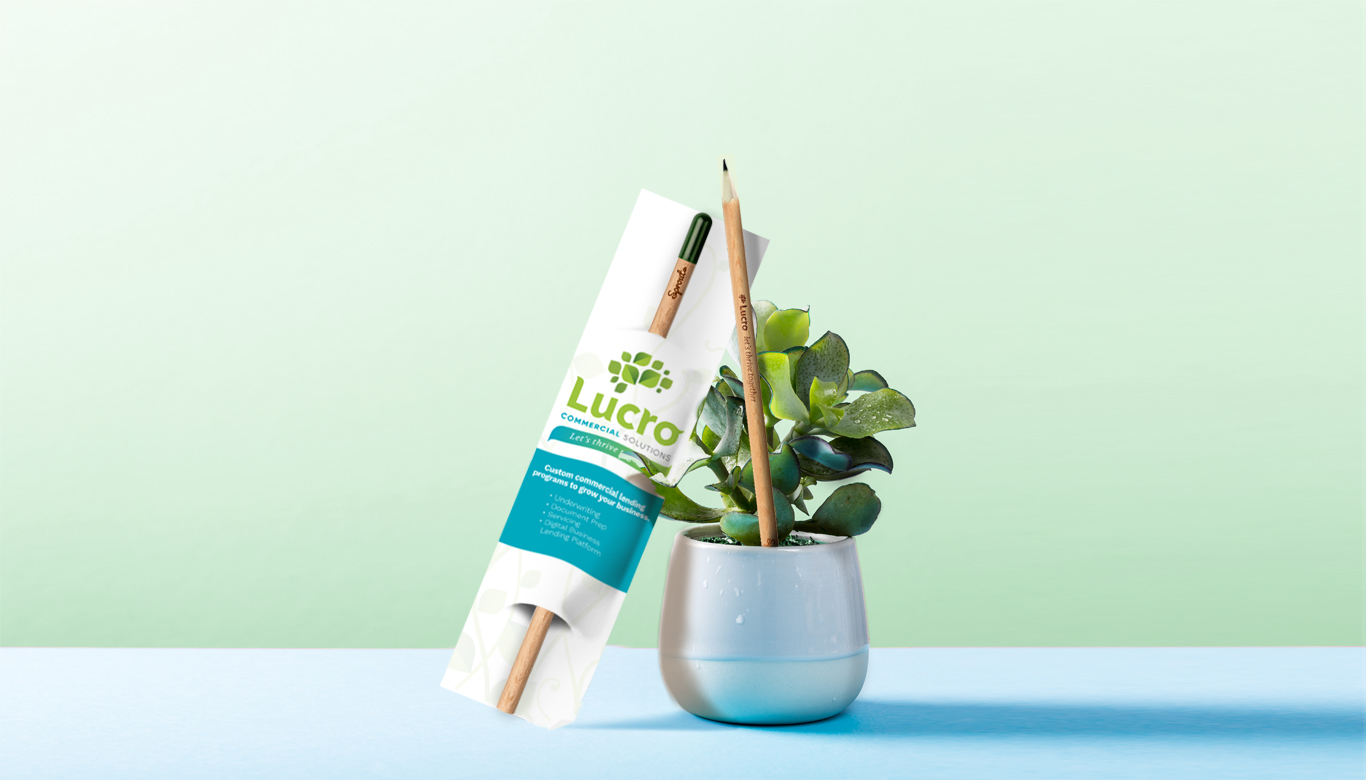 Designed promotional pencils leaning against a small plant.