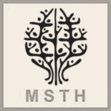 MSTH: Moms Stop the Harm