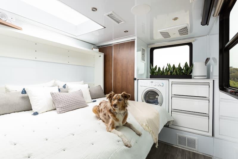 luxury trailer bedroom with dog
