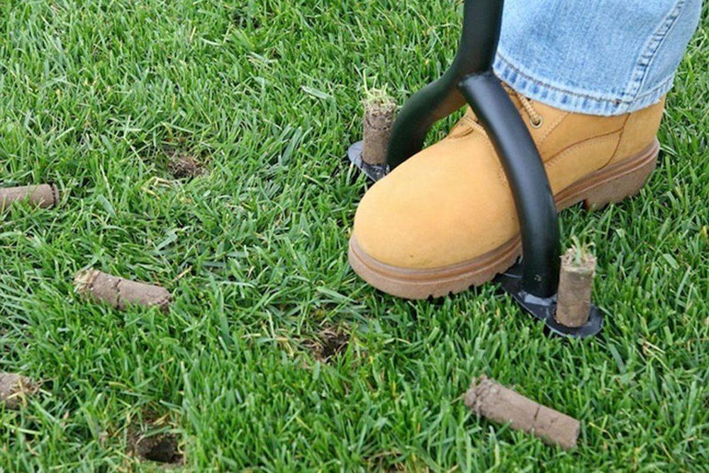 Aération de pelouse