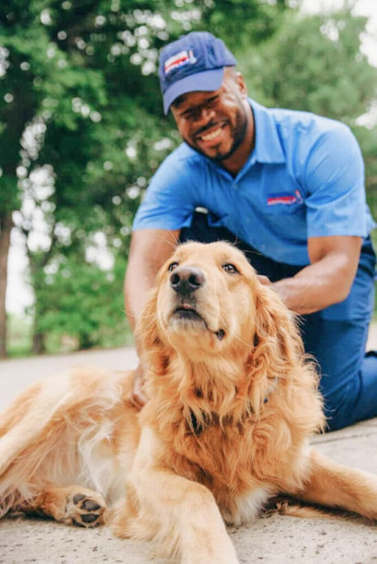 AC Expert with Dog AC Companies in The Woodlands, Texas