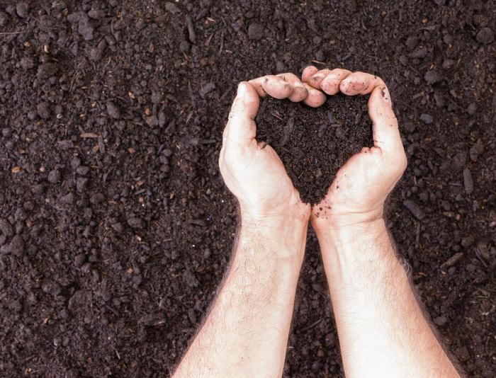 Soil heart image