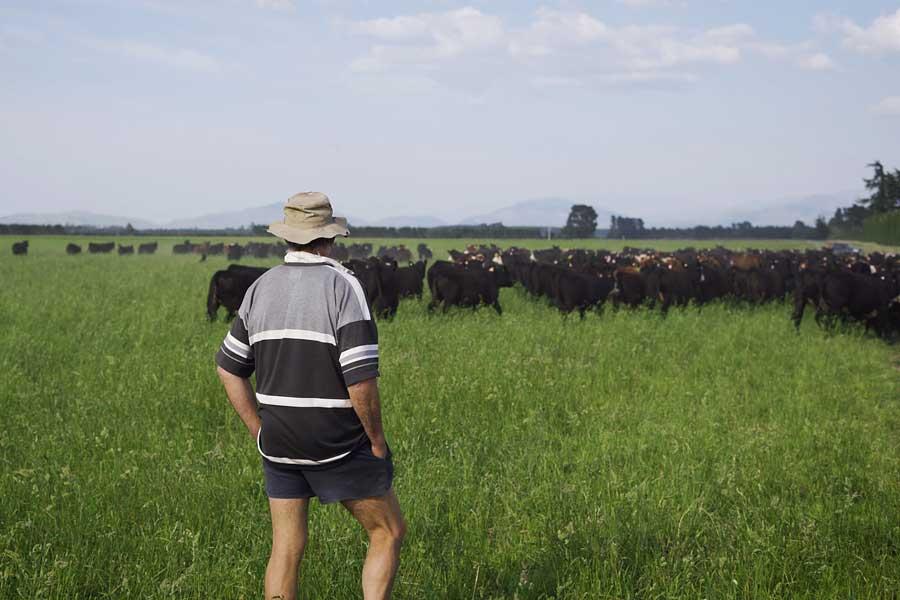 Farming System Analysis