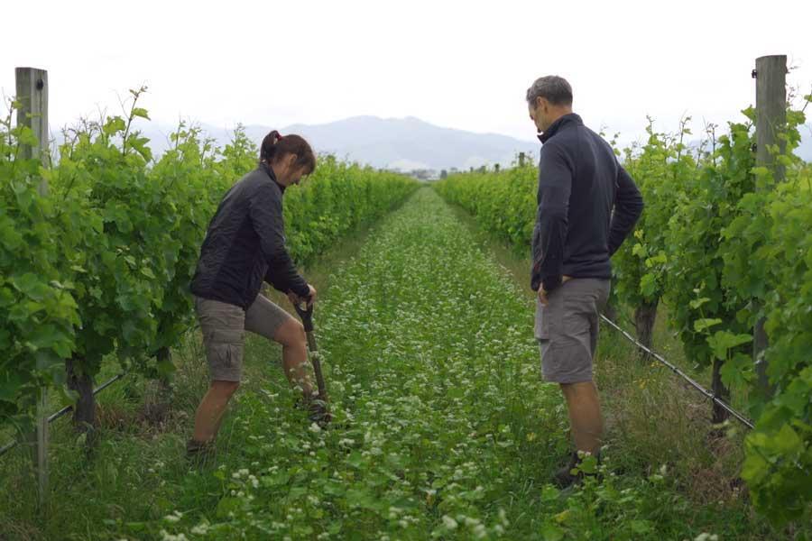 Farming System Improved